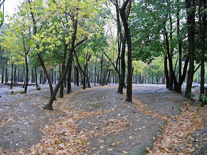 چرا درهای پارک چیتگر همچنان بسته است