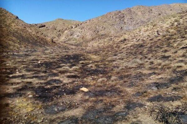 مهار آتش سوزی اراضی بخش مرکزی و روستای بوچیر در پارسیان