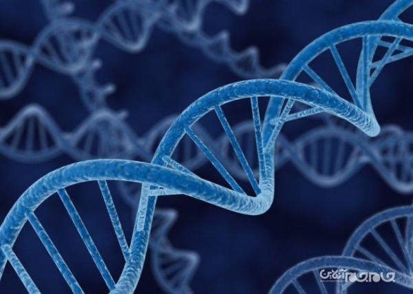 موفقیت پژوهشگران در کنترل عملکرد DNA با استفاده از نور